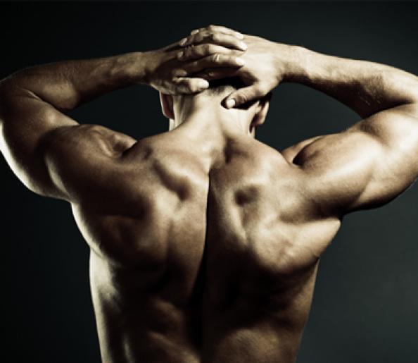 the-boulder-shoulder-workout-rotator